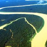 <p>Aprenda mais sobre a Floresta Amazônica. </p>